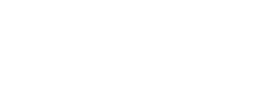 Flight Express Ltd logo